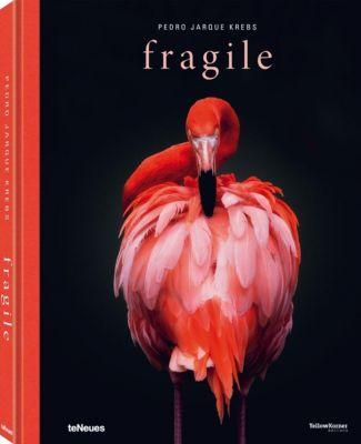 Fragile - Pedro Jarque Krebs |