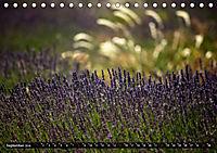 Frankreich - die Provence (Tischkalender 2019 DIN A5 quer) - Produktdetailbild 9