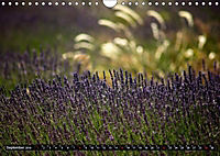 Frankreich - die Provence (Wandkalender 2019 DIN A4 quer) - Produktdetailbild 9