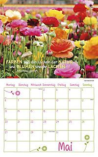 Freude am Leben Kalender-Set 2019, 8tlg. - Produktdetailbild 5