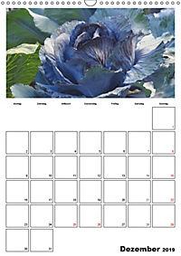 Frisches Gemüse (Wandkalender 2019 DIN A3 hoch) - Produktdetailbild 12