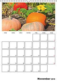 Frisches Gemüse (Wandkalender 2019 DIN A3 hoch) - Produktdetailbild 11
