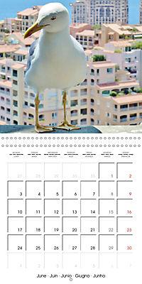 From Nice to San Remo (Wall Calendar 2019 300 × 300 mm Square) - Produktdetailbild 6