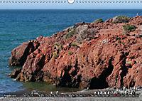 From the Rainforest to Tierra del Fuego (Wall Calendar 2019 DIN A3 Landscape) - Produktdetailbild 8