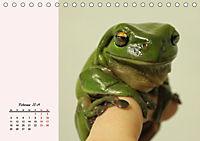 Froschig schön! Dekorative Könige der Tümpel und Teiche (Tischkalender 2019 DIN A5 quer) - Produktdetailbild 2