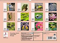 Froschig schön! Dekorative Könige der Tümpel und Teiche (Wandkalender 2019 DIN A3 quer) - Produktdetailbild 13