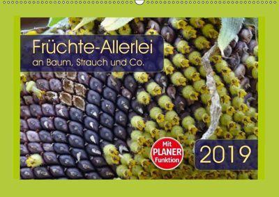 Früchte-Allerlei an Baum, Strauch und Co. (Wandkalender 2019 DIN A2 quer), Angelika Keller