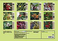Früchte-Allerlei an Baum, Strauch und Co. (Wandkalender 2019 DIN A2 quer) - Produktdetailbild 1