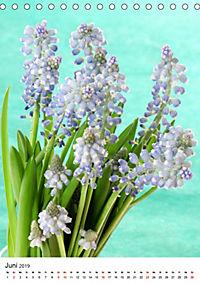 Frühlingsblumen Hyazinthen (Tischkalender 2019 DIN A5 hoch) - Produktdetailbild 6