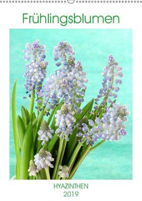 Frühlingsblumen Hyazinthen (Wandkalender 2019 DIN A2 hoch), Gisela Kruse