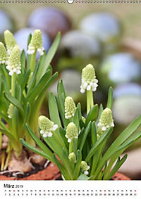 Frühlingsblumen Hyazinthen (Wandkalender 2019 DIN A2 hoch) - Produktdetailbild 3