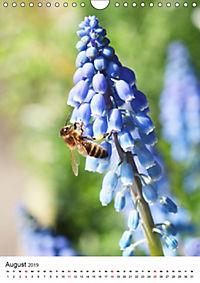 Frühlingsblumen Hyazinthen (Wandkalender 2019 DIN A4 hoch) - Produktdetailbild 8