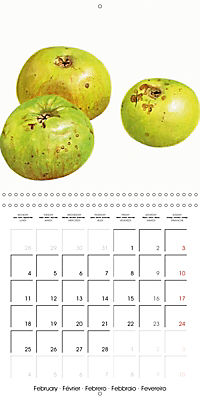 FRUITS SELECTED PAINTINGS BY YANNY PETTERS (Wall Calendar 2019 300 × 300 mm Square) - Produktdetailbild 2