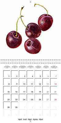FRUITS SELECTED PAINTINGS BY YANNY PETTERS (Wall Calendar 2019 300 × 300 mm Square) - Produktdetailbild 4