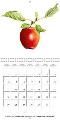FRUITS SELECTED PAINTINGS BY YANNY PETTERS (Wall Calendar 2019 300 × 300 mm Square) - Produktdetailbild 11