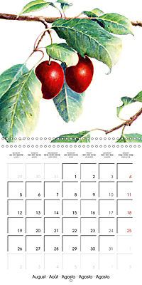 FRUITS SELECTED PAINTINGS BY YANNY PETTERS (Wall Calendar 2019 300 × 300 mm Square) - Produktdetailbild 8