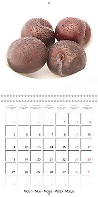 FruityMania (Wall Calendar 2019 300 × 300 mm Square) - Produktdetailbild 3