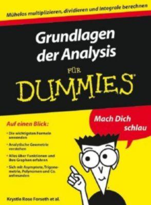 ...für Dummies: Grundlagen der Analysis für Dummies, Mark Ryan, Michelle Rose Gilman, Krystle Rose Forseth, Christopher Burger, Deborah J. Rumsey