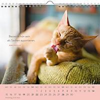 Für Katzenfreunde 2019 - Produktdetailbild 2