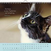 Für Katzenfreunde 2019 - Produktdetailbild 4