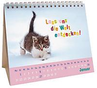 Für kleine Katzenfans 2019 - Produktdetailbild 1