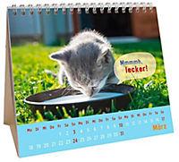Für kleine Katzenfans 2019 - Produktdetailbild 3