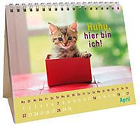 Für kleine Katzenfans 2019 - Produktdetailbild 4