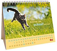 Für kleine Katzenfans 2019 - Produktdetailbild 5