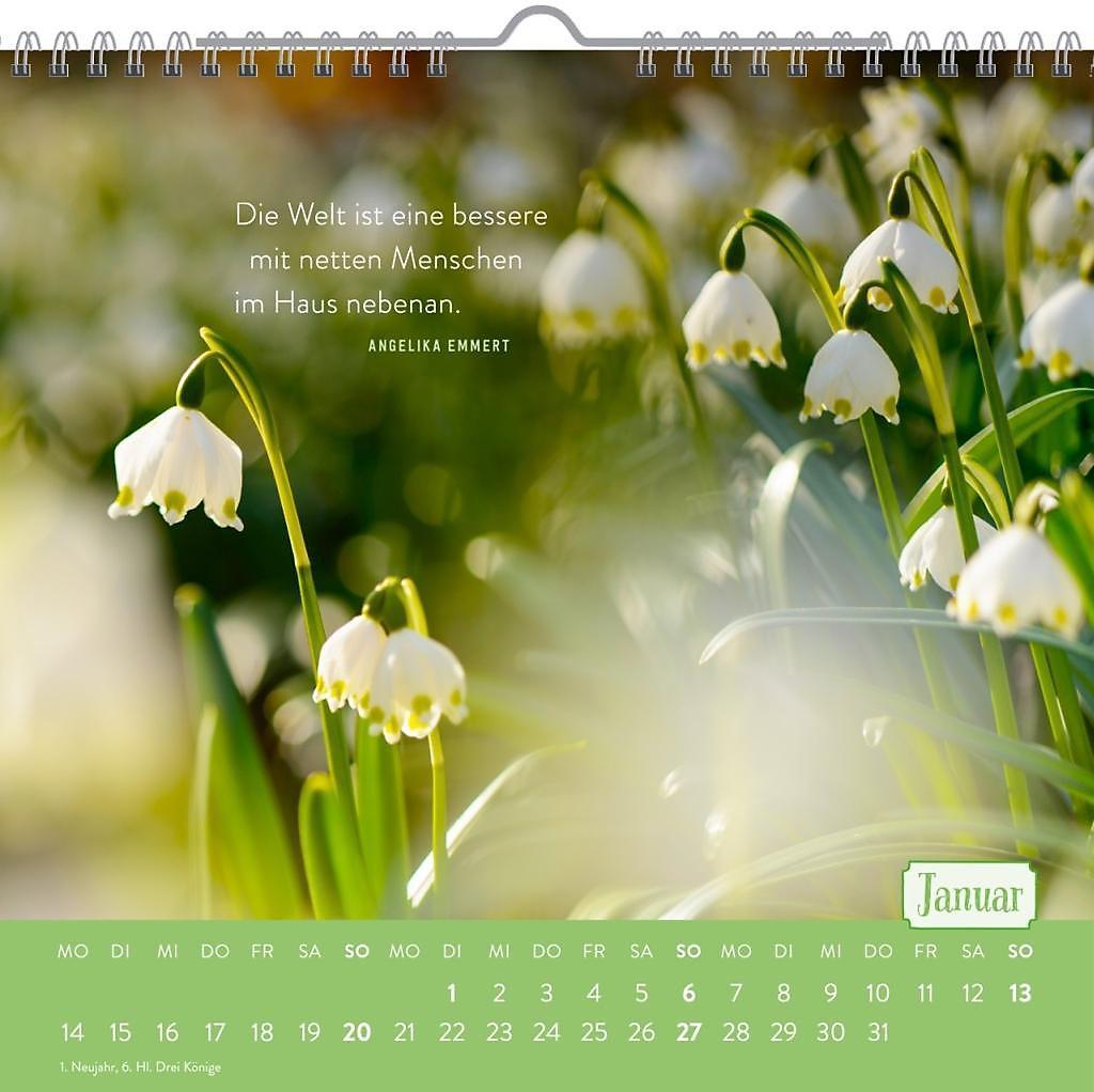 Für Nette Nachbarn 2019 Kalender Bei Weltbildde Bestellen