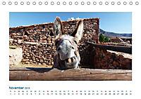 Fuerteventura. Die karge Schöne der Kanaren (Tischkalender 2019 DIN A5 quer) - Produktdetailbild 11