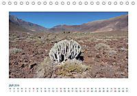 Fuerteventura. Die karge Schöne der Kanaren (Tischkalender 2019 DIN A5 quer) - Produktdetailbild 7