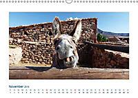 Fuerteventura. Die karge Schöne der Kanaren (Wandkalender 2019 DIN A3 quer) - Produktdetailbild 11