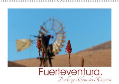 Fuerteventura. Die karge Schöne der Kanaren (Wandkalender 2019 DIN A2 quer), Lucy M. Laube