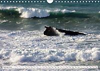 Fuerteventura (Wandkalender 2019 DIN A4 quer) - Produktdetailbild 2
