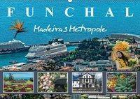 Funchal Madeiras Metropole (Wandkalender 2019 DIN A2 quer), Dieter Meyer