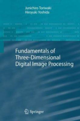 Fundamentals of Three-dimensional Digital Image Processing, Junichiro Toriwaki, Hiro Yoshida