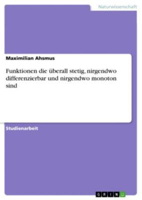 Funktionen die überall stetig, nirgendwo differenzierbar und nirgendwo monoton sind, Maximilian Ahsmus
