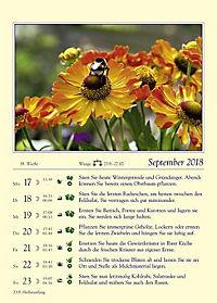 Gärtnern mit dem Mond - Kalender 2018 - Produktdetailbild 12