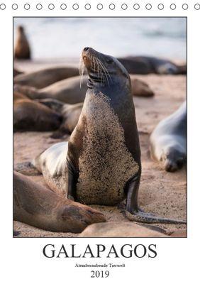 Galapagos - Atemberaubende Tierwelt (Tischkalender 2019 DIN A5 hoch), Jeanette Dobrindt