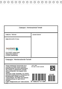 Galapagos - Atemberaubende Tierwelt (Tischkalender 2019 DIN A5 hoch) - Produktdetailbild 13