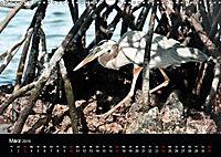 Galapagos. Fauna hautnah (Wandkalender 2019 DIN A3 quer) - Produktdetailbild 3