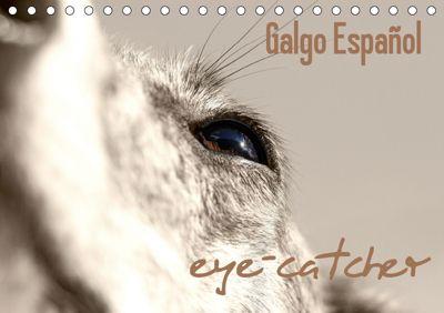 Galgo eye-catcher (Tischkalender 2019 DIN A5 quer), Andrea Redecker