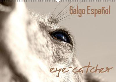 Galgo eye-catcher (Wandkalender 2019 DIN A2 quer), Andrea Redecker