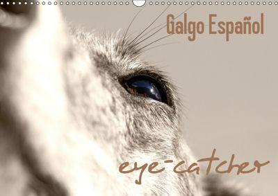 Galgo eye-catcher (Wandkalender 2019 DIN A3 quer), Andrea Redecker