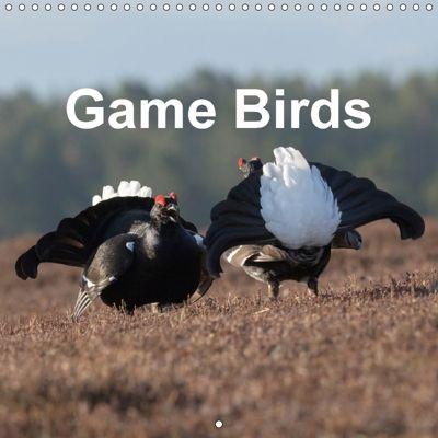 Game Birds (Wall Calendar 2018 300 × 300 mm Square), Pete Walkden