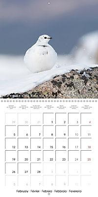 Game Birds (Wall Calendar 2018 300 × 300 mm Square) - Produktdetailbild 2