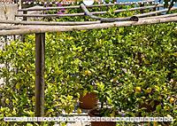 GARDASEE Idyllisches Limone sul Garda (Wandkalender 2018 DIN A4 quer) Dieser erfolgreiche Kalender wurde dieses Jahr mit - Produktdetailbild 6