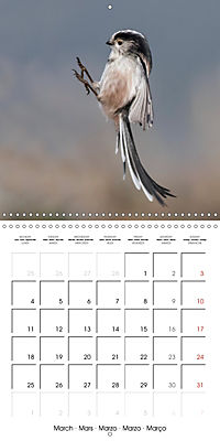 Garden Birds in Flight (Wall Calendar 2019 300 × 300 mm Square) - Produktdetailbild 3