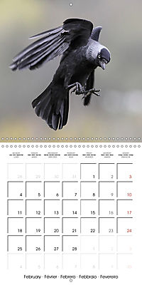 Garden Birds in Flight (Wall Calendar 2019 300 × 300 mm Square) - Produktdetailbild 2