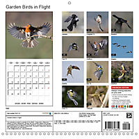 Garden Birds in Flight (Wall Calendar 2019 300 × 300 mm Square) - Produktdetailbild 13